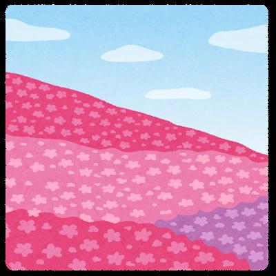 芝桜のイラスト