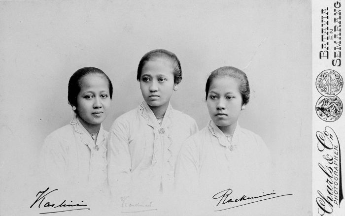 Raden Ajeng R A Kartini Biografi Biodata Profil Foto