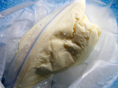 How to make homemade ice cream in a baggie open the gallon sized bag and check to see if the ice cream is hard if not keep shaking once the ice cream is finished quickly run the closed pint sized ccuart Gallery