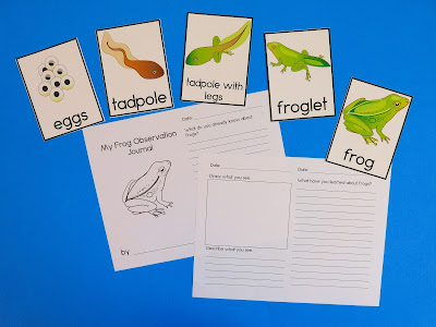 https://www.teacherspayteachers.com/Product/Frog-Life-Cycle-3-Part-Cards-Observation-Journal-and-Worksheets-2440386