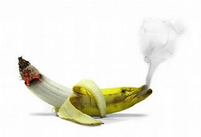 smoking bananas