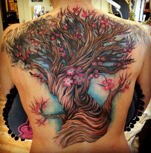 Esta gigantesca flor de cereja árvore