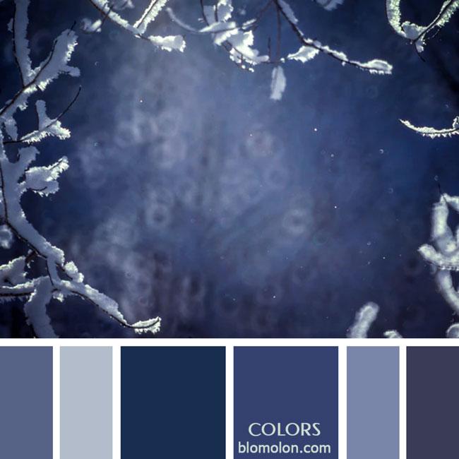 variedad_en_color_paletas_de_colores_54