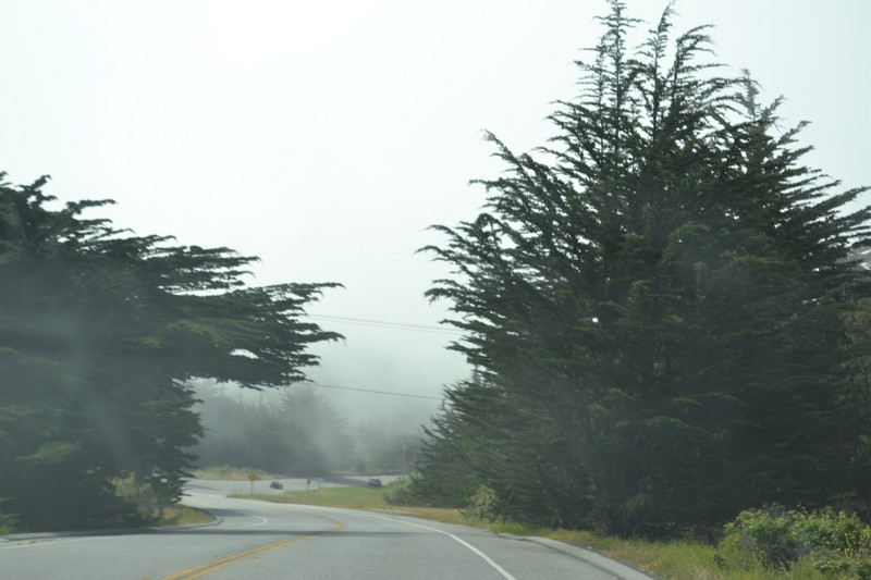 Cote, Californie