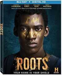 Roots Part 1 (2016) Hindi Dubbed Movie Download BluRay 480p