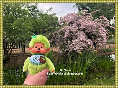 kiki monchhichi matcha jardin des plantes rouen