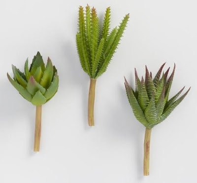 Artificial Aloe and Cactus Stems Set