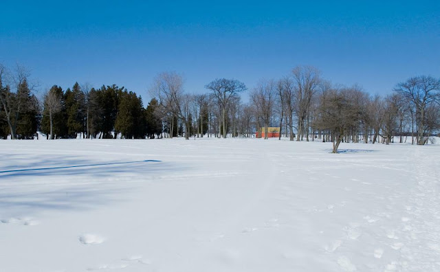 a view of Tudhope Park, Orillia covered in winter snow