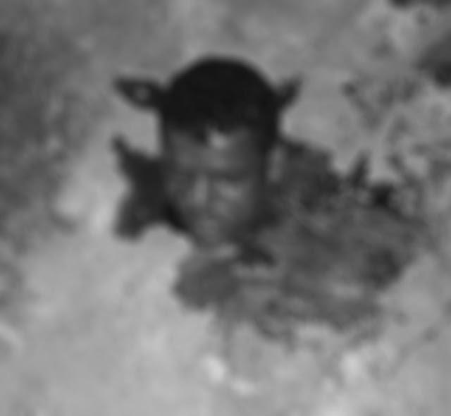 Gari que fazia limpeza encontra cabeça humana jogada na rua