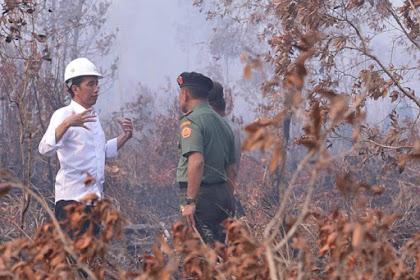 Jelang Debat: Era Jokowi Perusak Hutan Dihukum Rp 18,3 Triliun