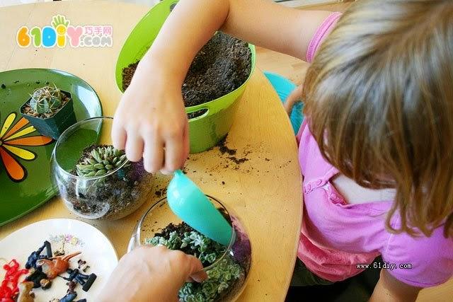terrariums, terrarios,plantas, hogar, manualidades,
