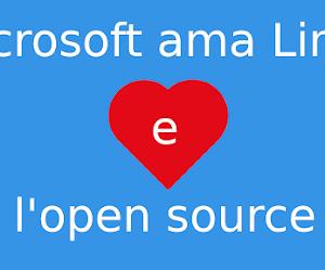 Microsoft ♥ Linux: rilasciate le specifiche exFAT che verranno aggiunte al kernel Linux