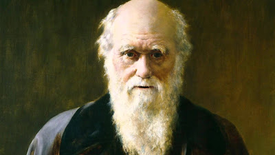 charles darwin ve evrim teorisi