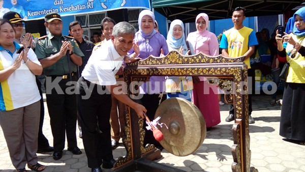 http://www.kayuagung.com/2016/03/iskandar-se-canangkan-pekan-imunisasi.html