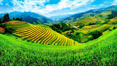 Vietnam - Famous destination suitable for all travel experiences