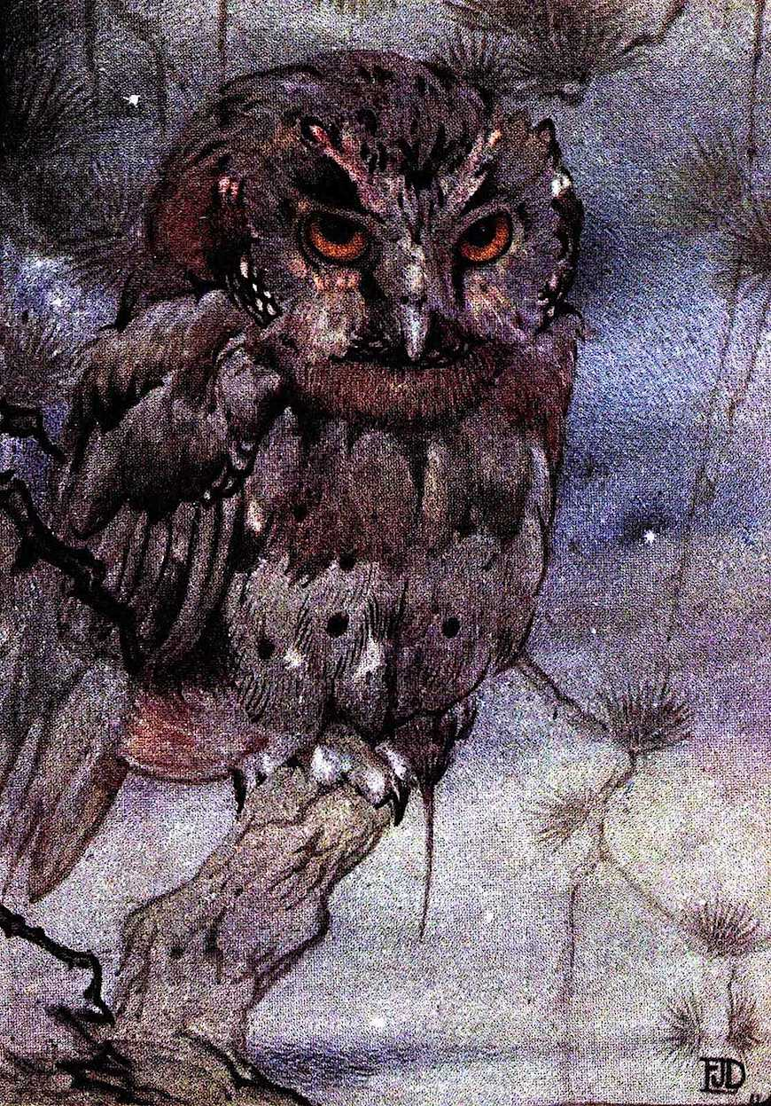 Edward Julius Detmold color illustration of a winter owl