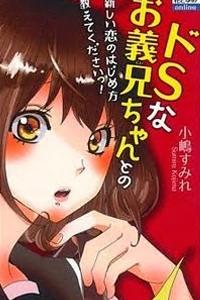 Do S na Oniichan to no Atarashii Koi no Hajimekata Oshiete Kudasai!
