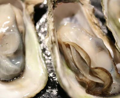 oysters-fish-with-omega-3-fatty-acids-list-picture