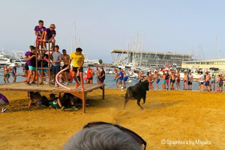 Bous a la mar, Denia 走る牛と小さな舞台に乗って逃げる人々