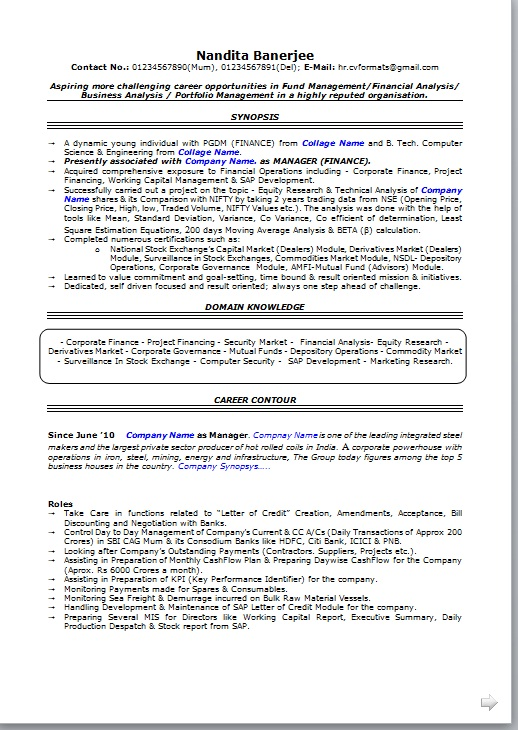 Professional Resume Format Free Download