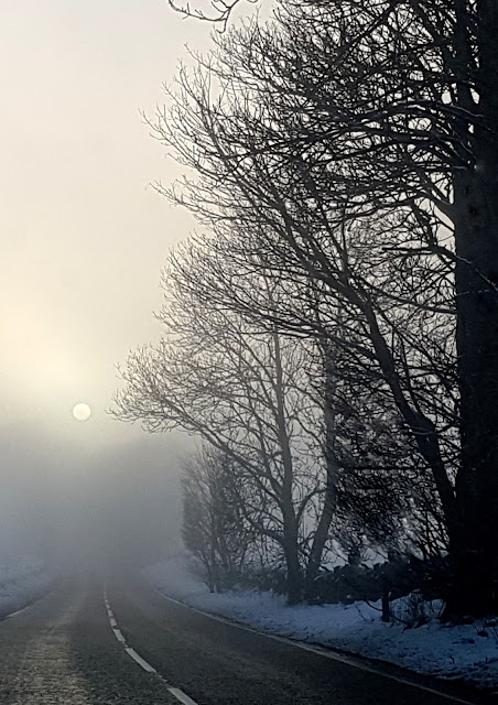 Snow, fog and sun make a beautiful combination