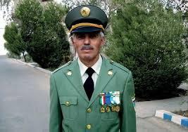 محمود رضا صفوي