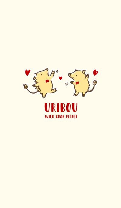 URIBOU - WILD BOAR PIGLET *DANCE