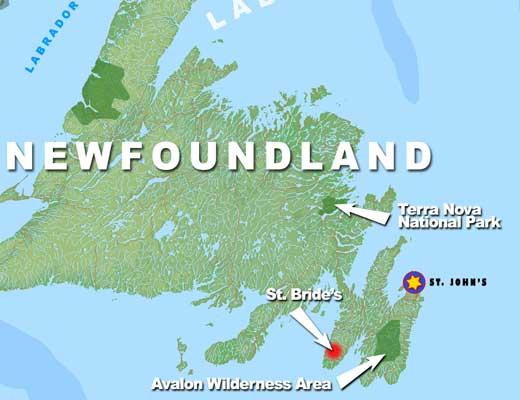 Demographics of Newfoundland and Labrador