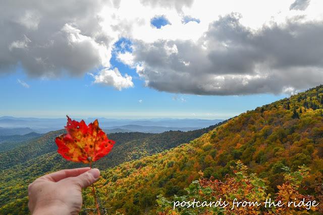 Beautiful fall colors at the Buck Spring Overpass, Blue Ridge Parkway, North Carolina