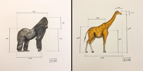 00-Ran-Shapira-Animal-Drawings-from-a-Sculptor-s-Perspective-www-designstack-co