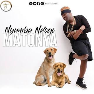Matonya - Nyumba ndogo (Nachelewa)