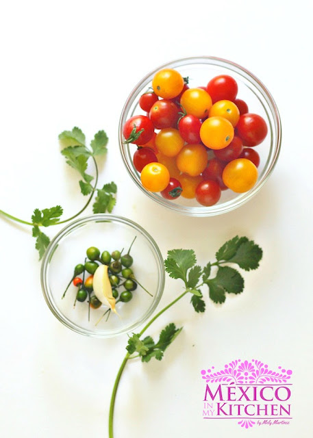 Raw cherry tomatoes salsa