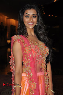 Pooja Javeri Pictures at Right Right Audio Launch ~ Bollywood and South Indian Cinema Actress Exclusive Picture Galleries