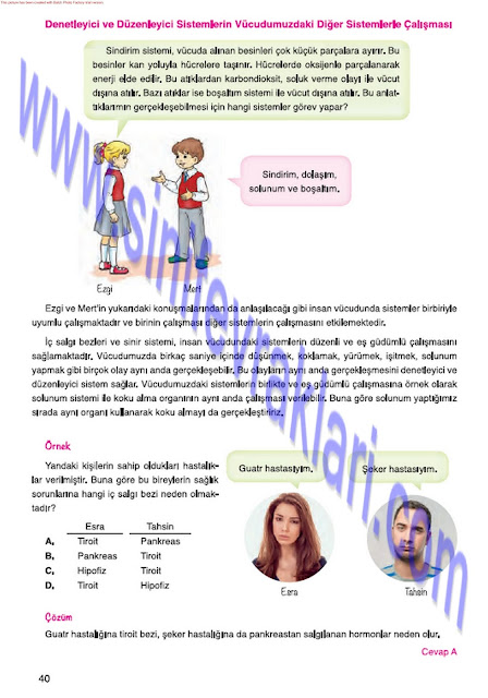 Mevsim Yayınları 7. Sınıf Fen Bilimleri Ders Kitabı Cevapları Sayfa 40