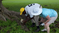 Jamaica golf courses