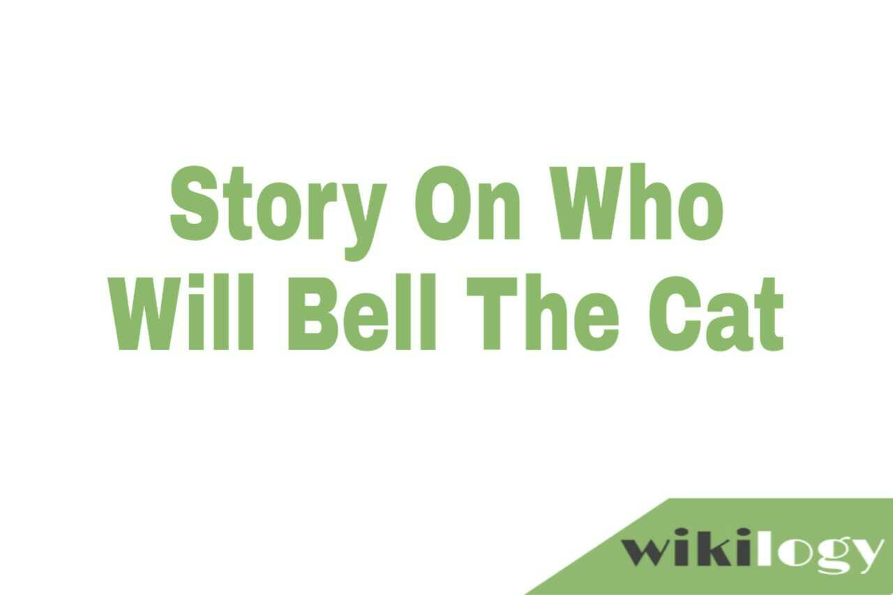 Who will bell the cat story, Who is to bell the cat story