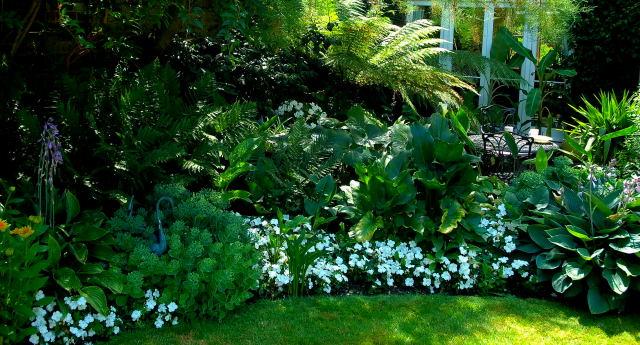 клумба-непрерывного-цветения