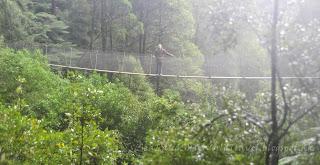 tasmania Montezuma Fall