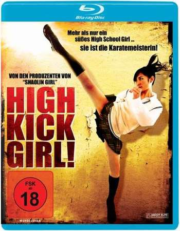 Poster Of High-Kick Girl 2009 Dual Audio 300MB BRRip 576p Free Download Watch Online