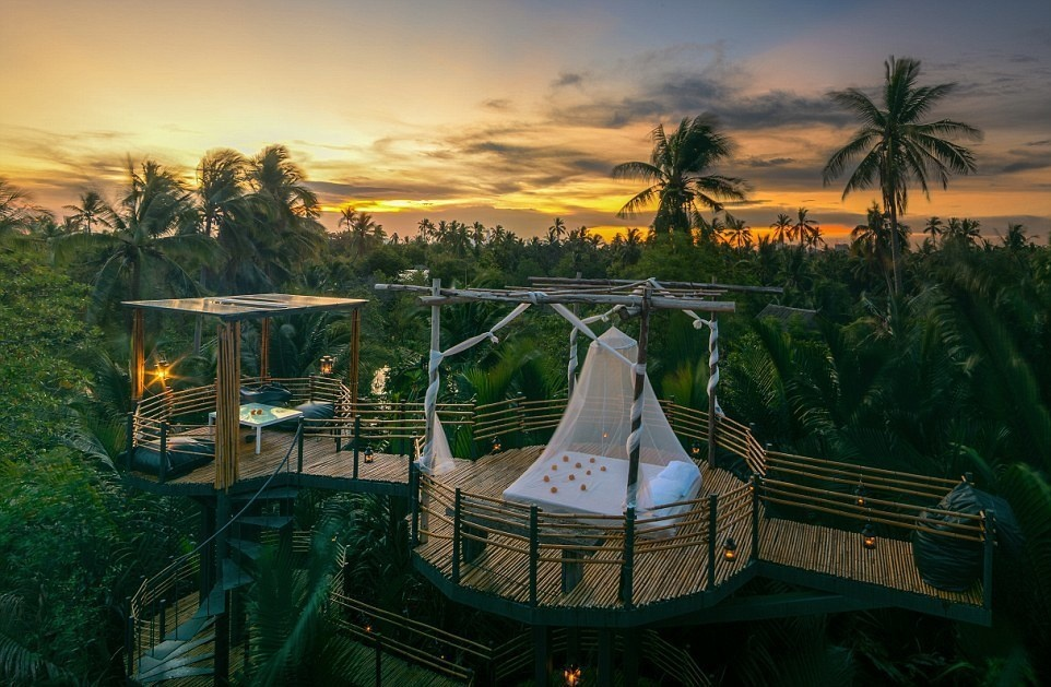 Bangkok Tree House, Thailand - 15 Incredible Hotel Rooms Where You Can Sleep Under The Stars.