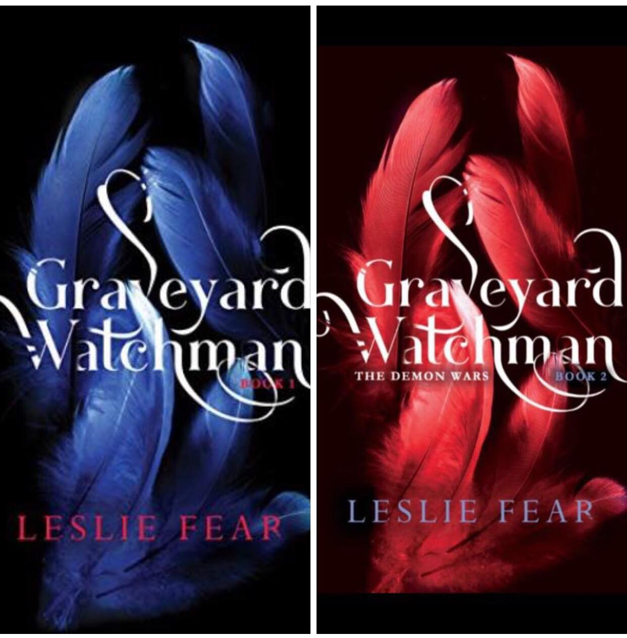 Graveyard Watchman Books 1 And 2 By Leslie Fear