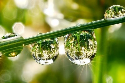 http://3.bp.blogspot.com/-ozTCGkFgEwg/UZ7kbSG9fAI/AAAAAAAACVY/KyNaEJvqZKc/s1600/lingkungan+segar,seperti+tetes+air.jpeg