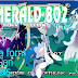 Pokemon Emerald 802 3.0 [CHINA/ENGLISH]