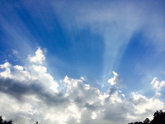 雲林即時天氣/日出日入時間