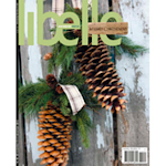 Libelle Cover Photo and Work  By Michelle Edwards