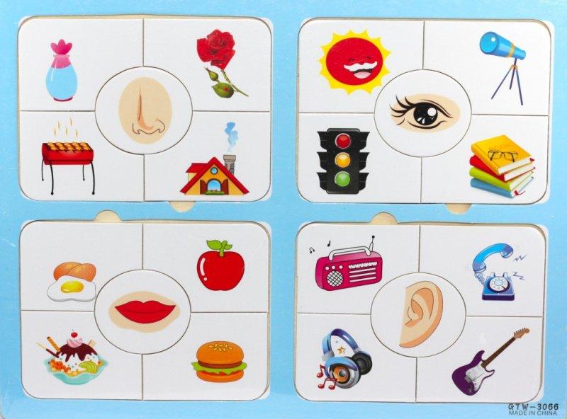 Дидактическая игра с картинками в детском саду