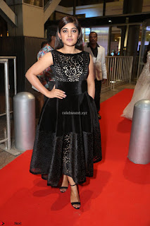 Niveda Thomas Black Sleeveless Cute Dress at 64th Jio Filmfare Awards South 2017 ~  Exclusive 095.JPG