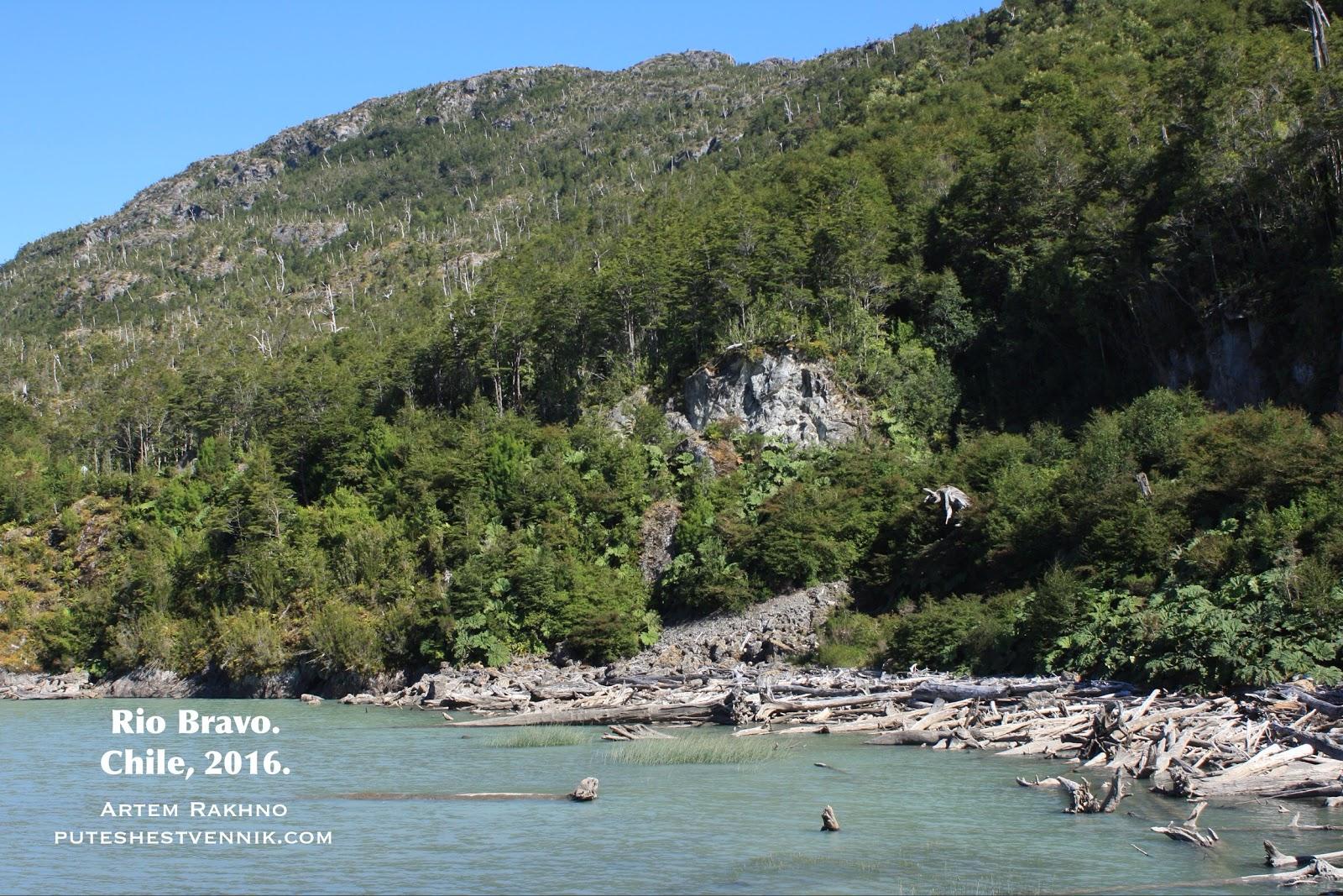 Дикий берег реки в Чили