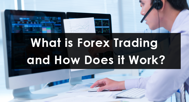 What does a forex broker do