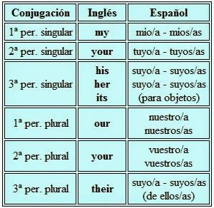 Adjetivos Posesivos En Inglés Aprendo Inglés